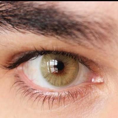 لنز رنگی سولوتیکا امبر